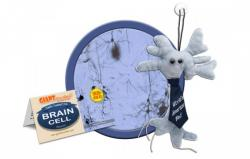 Giant Microbes; Worlds Smartest Dad Brain Cell
